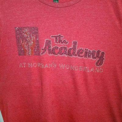 Rhinestone bling T-shirts
